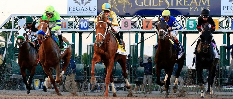 fixed odds horse racing betting rules