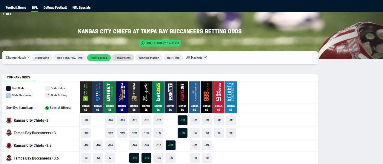 I want to bet on the supperbowl in play betting software review
